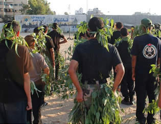 Children at Hamas summer camps undergo paramilitary training (Pictures from the PALDF website, July 22, 2012).