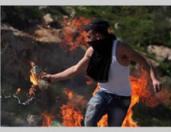 A Palestinian rioter prepares to throw a Molotov cocktail at IDF forces in Judea and Samaria