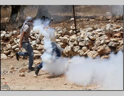 Confrontations between Palestinians and the Israeli security forces at Qalqiliya (Wafa News Agency, August 2, 2013)
