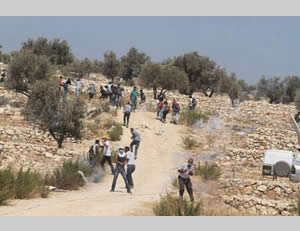 A Palestinian throws stones at Israeli security forces in the village of Qadum at the weekly demonstration (Wafa, August 30, 2013).