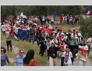 Foreign activists wave flags, including the blue EU flag, at an event held during the seventh Bil'in conference (Arabs48 website, April 11, 2012).