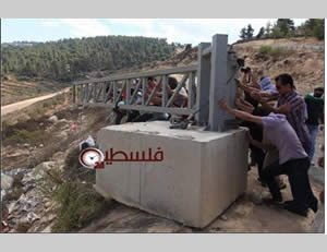 Palestinians and foreign activists destroy the gate erected by the IDF at the village of Al-Walaja (Pal24 website, October 3, 2013)