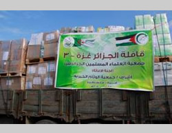 Trucks carrying aid for the Gaza Strip at the Rafah crossing: