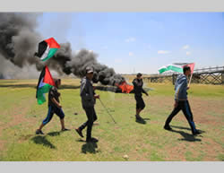 Gazan activists wave Palestinian flags.
