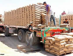 Trucks carrying cement enter the Gaza Strip with Egyptian authorization for the first time since Operation Protective Edge.