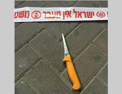 The knife used at the stabbing attack at the Qalandia roadblock (Picture Israel Police Force Spokesman's Unit, October 17, 2015).