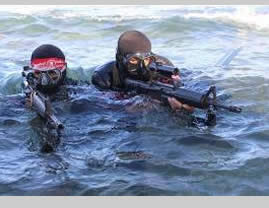 The naval commando unit of the DFLP's military-terrorist wing (Facebook page of the National Resistance Battalions, November 15, 2015).