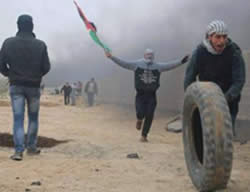 Palestinians riot near the border security fence in the Gaza Strip, west of the village of Nahal Oz (Facebook page of Quds, January 8, 2016).