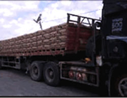 Trucks bring cement into the Gaza Strip through the Kerem Shalom crossing (Facebook page of Paldf, May 23, 2016).