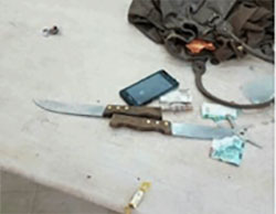 The knives found hidden in the handbag of the Palestinian woman near the Cave of the Patriarchs in Hebron (Facebook page of QudsN, November 1, 2016).