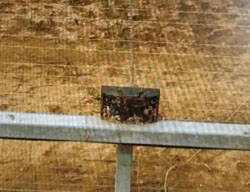 IED placed on the border security fence in the northern Gaza Strip (IDF spokesman, March 7, 2017).