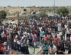 Muslims hold the Friday prayer outside the Temple Mount compound, unable to enter because of the age limitation imposed by the Israel Police Force (Wafa, July 28, 2017).