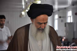 Ayatollah Ghaemmaghami, the head of the Iranian delegation, on his visit to Turkey