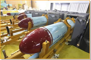 The C-704 (NASR 1) anti-ship missiles found aboard the ship