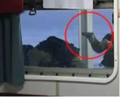 From the trailer: An Israeli soldier points a gun at passengers aboard the Mavi Marmara (YouTube.com)