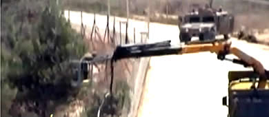 The IDF prunes a tree, providing an excuse for the Lebanese army to attack (Al-Jazeera TV, August 3, 2010).