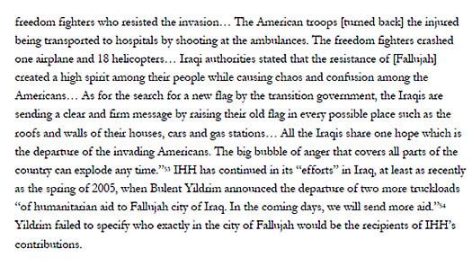 Passage from the study dealing with IHH's anti-American activities in Iraq.