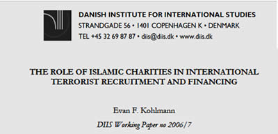 Title page of the Danish Institute's study.