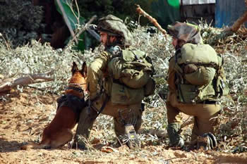 IDF soldiers in action in the Gaza Strip