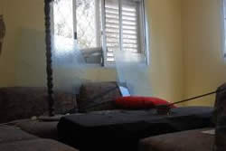 The house in Sderot damaged by rocket fire