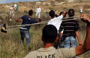 Violent confrontation between settlers and Palestinians (Hamas' palestine-info website, May 20, 2012)