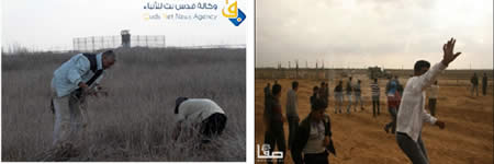 Left: Palestinians approach the security fence in the southern Gaza Strip (Safa News Agency, November 23, 2012). Right: Palestinian farmers work the land east of Khan Yunis near an IDF post (Qudsnet website, November 27, 2012).