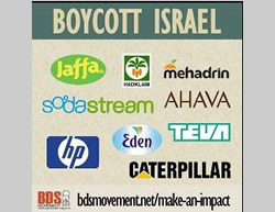 The Role of the Palestinians in the BDS Campaign