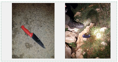 The two knives belonging to Obada Abu Ras (Panet website, January 27, 2016).