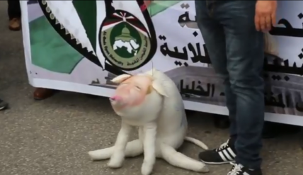 Demonstrations in Hebron to protest the decision of the American president to recognize Jerusalem as the capital of Israel. Trump is represented by a toy stuffed pig (Wafa News Agency on YouTube, December 13, 2017).