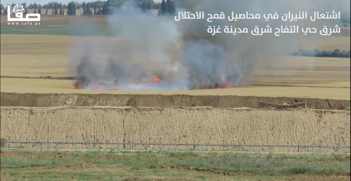 Fire in a wheat field in the area surrounding the Gaza Strip, caused by a kite with Molotov cocktail flown from the eastern Gaza Strip (SAFA Facebook page, April 29, 2018)