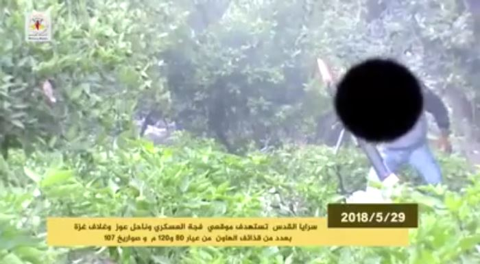 Rocket fire documented in a video produced by the PIJ's military wing (website of the PIJ's military wing, May 30, 2018).