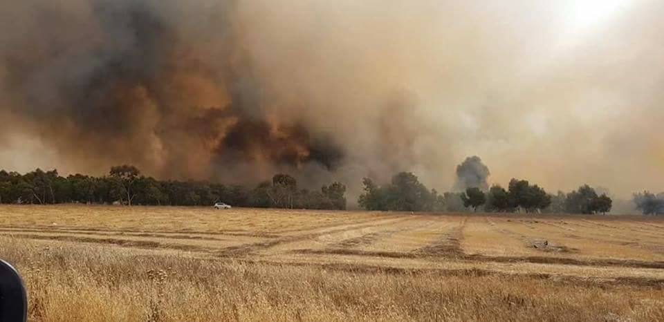 Fires in the western Negev near the Gaza Strip border (Facebook page of the
