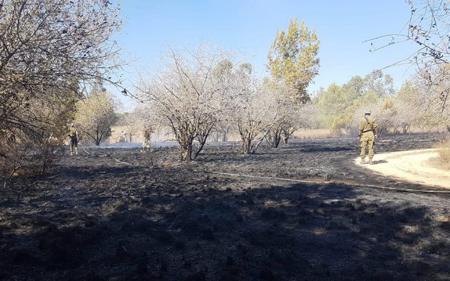 Aftermath of a fire in the Be'eri Forest, caused by an incendiary balloon launched from the Gaza Strip (Palinfo Twitter account, August 17, 2018).