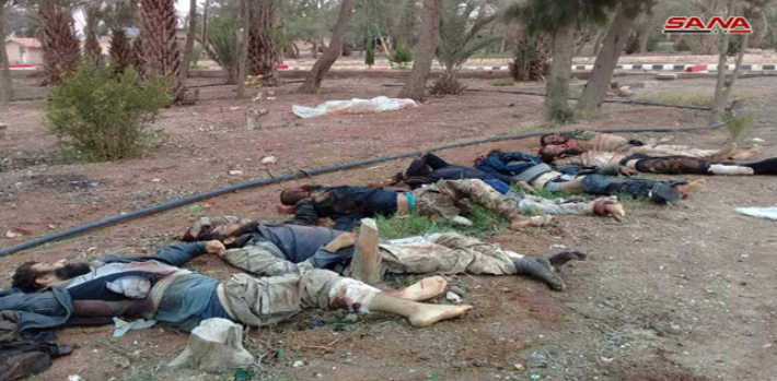 Bodies of ISIS operatives who were killed during the operation to free the Druze abductees and their children (SANA, November 9, 2018).