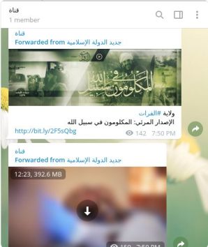 Screenshot of an ISIS group on Telegram: ISIS text, videos and photos (Twitter account, January 25, 2018)