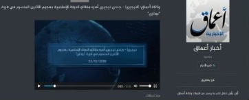 Amaq News account on ZeroNet (ZeroNet, January 22, 2019)