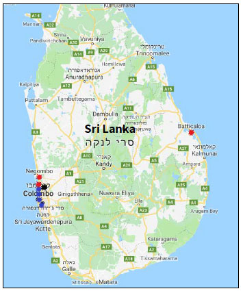 The locations of the terrorist attacks in Sri Lanka: the four hotels (blue circles) and three churches (red circles) where the suicide bombing attacks took place. The black circle marks the location where an explosive device blew up during a search in a safe house (Google Maps).
