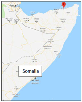 The city of Bosaso, in northeastern Somalia, on the shores of the Gulf of Aden (Google Maps)