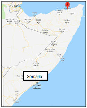 The city of Bosaso in northeastern Somalia, the site of intensive activity by ISIS (Google Maps)