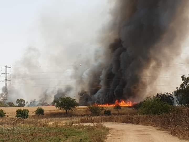 Fire in Israeli territory near the Gaza Strip border (Facebook page of the Sons of al-Zawari unit in Khan Yunis, May 23, 2019).