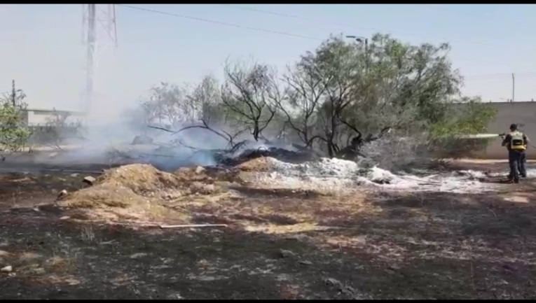 Putting out the fire in a forest near the Gaza Strip (Jewish National Fund, June 10, 2019).
