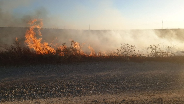 Fire in an Israeli community north of the southern Israeli city of Netivot caused by incendiary balloons (Western Negev Security unit, July 14, 2019).