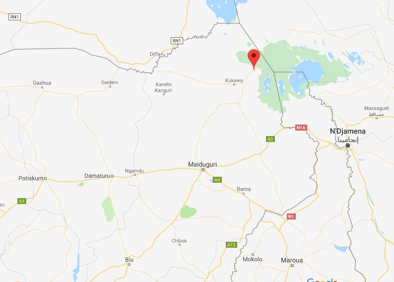 The town of Baga, near the border with Chad, near Lake Chad (Google Maps)