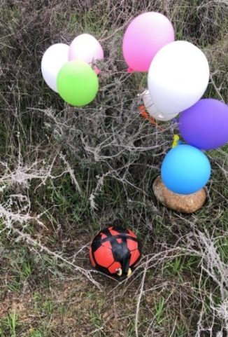 Balloon cluster with a soccer ball full of explosives that landed in the western Negev (western Negev regional council, January 23, 2020).