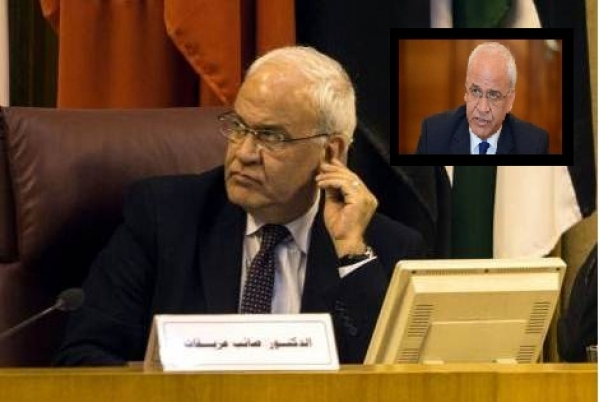 Saeb Erekat delivers a lecture using Zoom (PLO website, May 2, 2020).