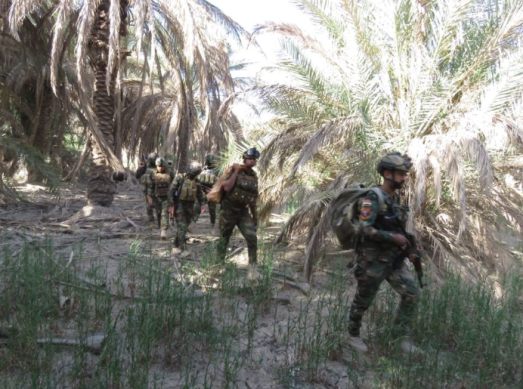 Iraqi army commando force during activity against ISIS southwest of Baghdad (Facebook page of the Iraqi Defense Ministry, May 31, 2020)