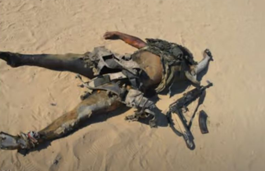 The body of one of the attackers killed by the Egyptian army at the farm (Al-Youm al-Sabea, July 21, 2020)