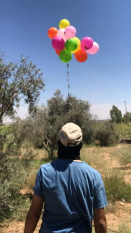 An operative of the PIJ's Baraq units launches an incendiary balloon cluster (Facebook page of the northern Gaza Strip Baraq unit, August 17, 2020).