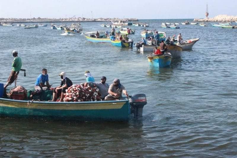 Gazan fishermen return to work (Facebook page of the ministry of agriculture in Gaza, September 2, 2020).