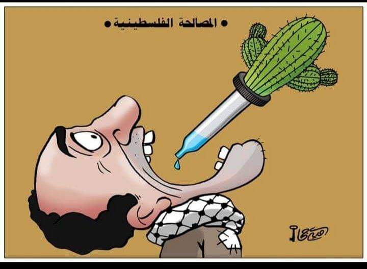 """Cartoon by Hamas-affiliated Omaya Joha illustrating the thirst of the Palestinian people for reconciliation. The Arabic reads, """"Palestinian reconciliation"""" (Palinfo Twitter account, February 10, 2021)."""